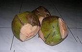 kelapa-hijau.jpg